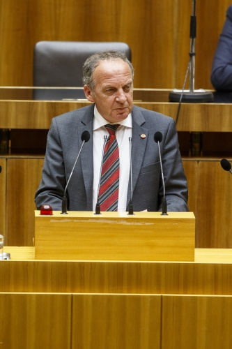Nationalratsabgeordneter Harry Buchmayr (S) am Rednerpult