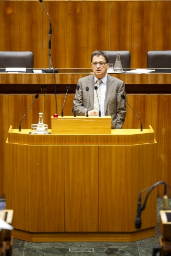 Nationalratsabgeordneter Peter Wittmann (S) am Rednerpult