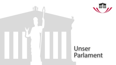 Unser Parlament: Kurzfilm Interviews