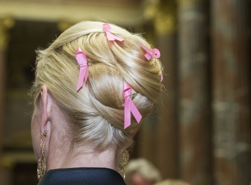 Pink Ribbon Cocktail Empfang anlässlich des Internationalen Brustkrebstages